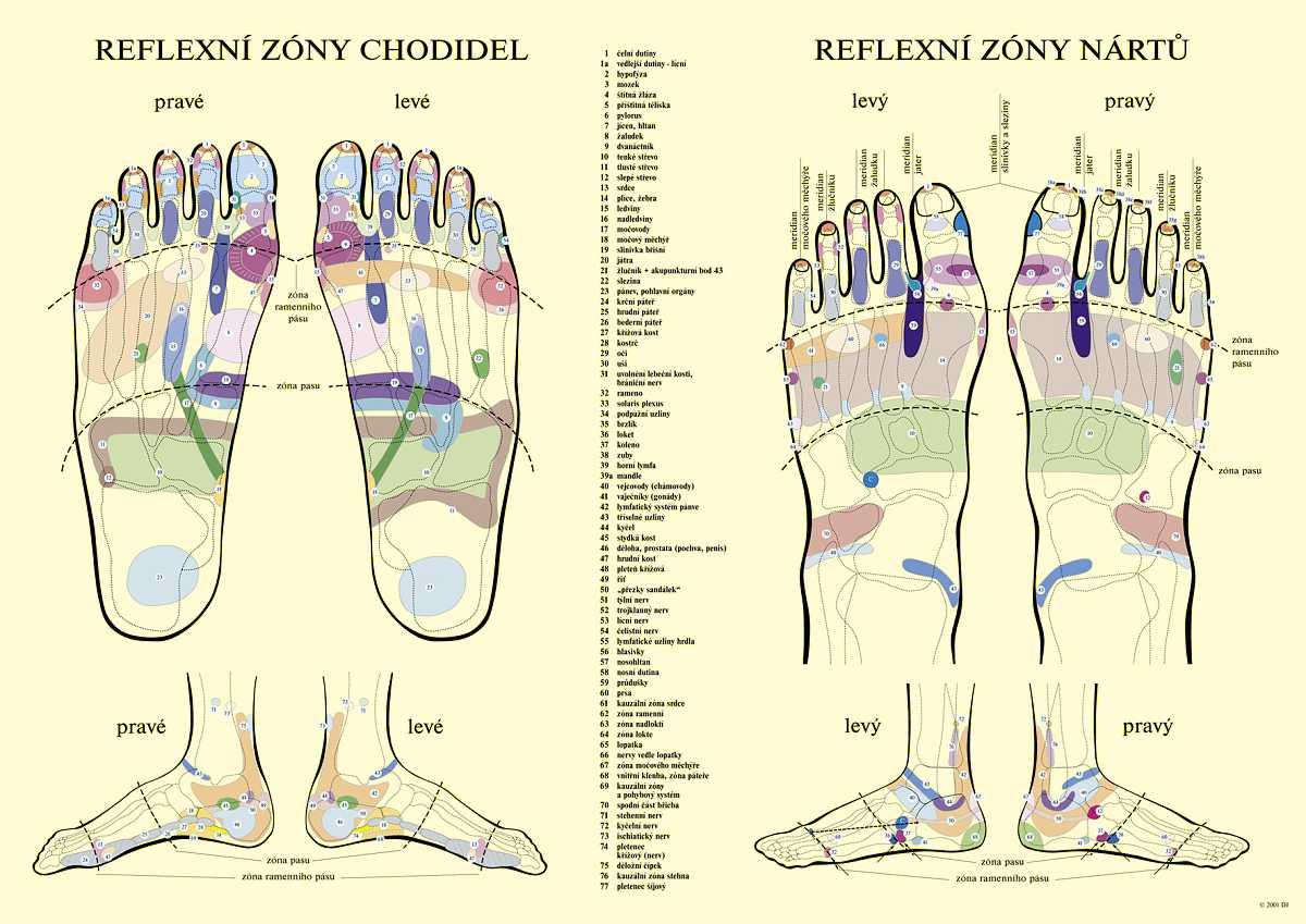 Reflexní plošky chodidel